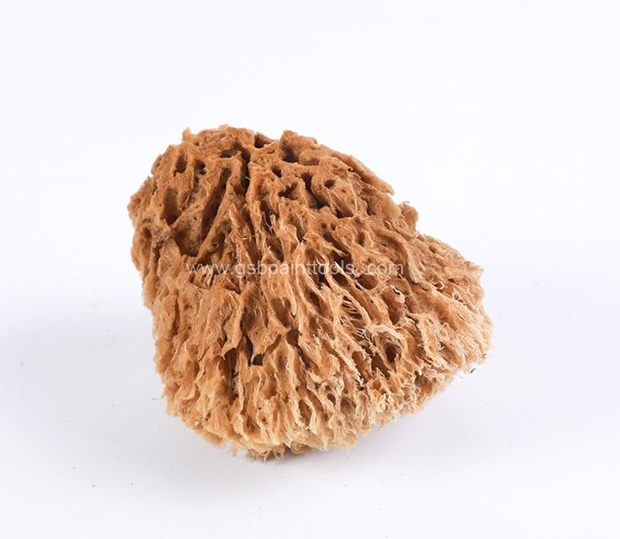 Natural Sponge TM-HM